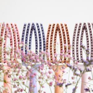 Fingerbrush-spring-Bloom